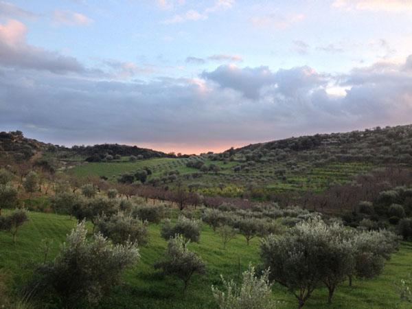 I prezzi | La Melagrana, Noto, Sicily, Italy